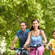 Stock Photo: Cycling in wood