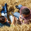 Stock Photo: Farmers on hay