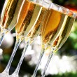 Sparkling champagne — Stock Photo #11664424