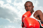 Boxeador — Foto de Stock