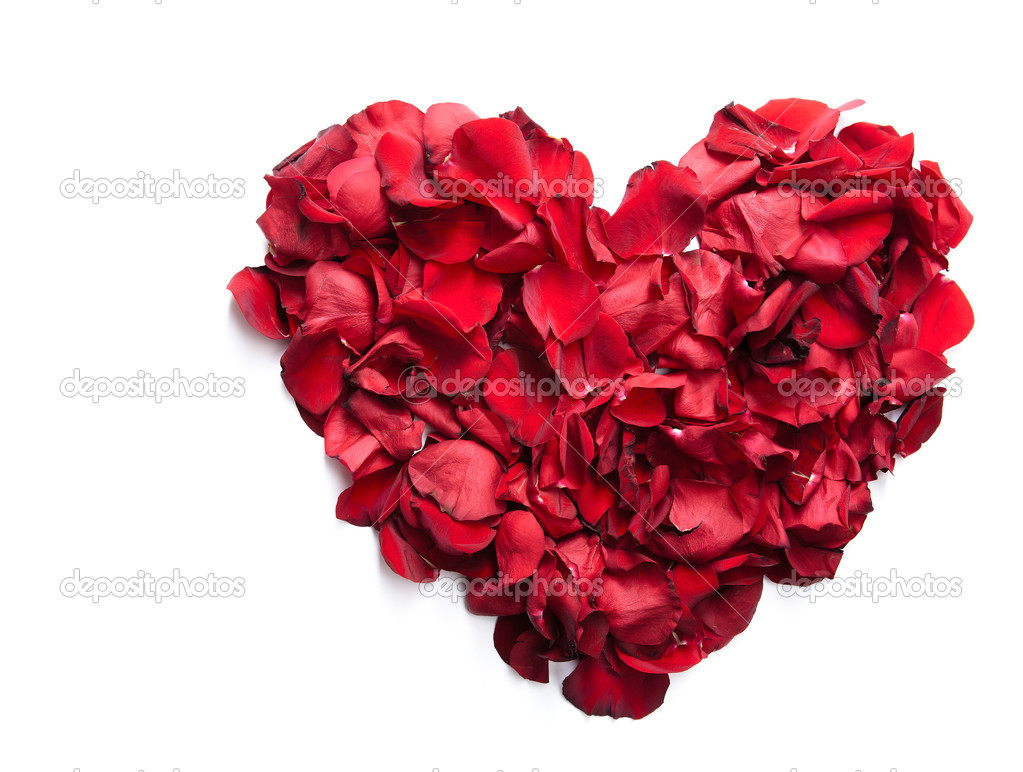 Red rose petals making up heart in isolation — Stock Photo #11664415