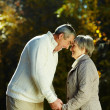 Autumn romance — Stock Photo
