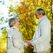 Romantic autumn — Stock Photo #11672417