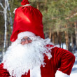 Positive Santa — Stock Photo #11672736