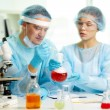 Stock Photo: Microbiological test