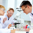 Stock Photo: Laboratory study