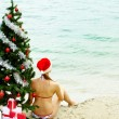 Stock Photo: Waiting for Christmas