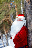 Santa in the wood — Stock Photo