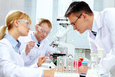 Laboratory study — Stock Photo