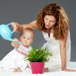 Stock Photo: Watering plant