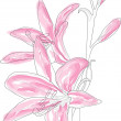 Beautiful pink lilly — Stock Vector