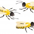 Bees or wasps — Stock Vector