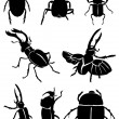 Stock Vector: Black beetles