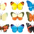 Multicolored butterfly collection - Stock Vector
