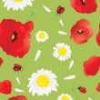 Beautiful poppies — Stockvectorbeeld