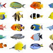 Set of tropical fishes — Stock Vector #11697698
