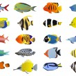 Set of tropical fishes — Stock Vector