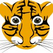Tiger baby head - Stock Vector