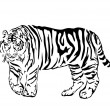 Stock Vector: Black bengal tiger