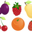 Stock Vector: Fruits and berries