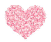 Hart van roze rozen — Stockvector