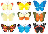 Multicolored butterfly collection — Stock Vector