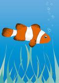 Peixe-palhaço debaixo d'água — Vetor de Stock