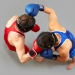 Fight - Foto de Stock