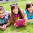 Students at leisure — Stock Photo #12515555