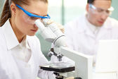 Clinical experiment — Stock Photo