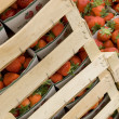 Strawberries ready for sale - Foto de Stock