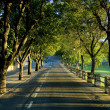 Road in the evening - Stock Photo