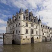 Slottet och trädgården av chenonceau — Stockfoto