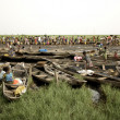 Market of Ganvie in Benin - Stock Photo
