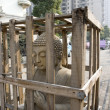 Statue of Buddha in a box - Stockfoto