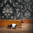 Mouse walking in a luxury old-fashioned roon - Stock Photo