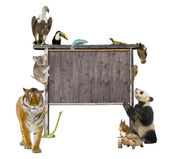 Group of wild animals around a blank wooden sign — Stock Photo