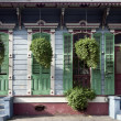 Hanging plants in front of house in New Orleans, Louisiana — Stock fotografie