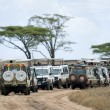 Vehicles on safari in Serengeti National Park, Serengeti, Tanzania, Africa - Stock Photo