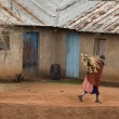 Woman carrying firewood through village, Tanzania, Africa - Stock Photo