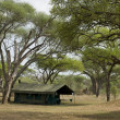 Camping tent in the Serengeti, Tanzania, Africa - Stock Photo