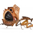Giant Dead Leaf Mantis, Deroplatys desiccata, 7 months old, in front of white background — Stock Photo