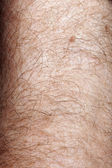 Close-up of human skin and hair on arm — Stock Photo