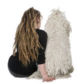 Rear view of a White Corded standard Poodle and a girl with dreadlocks sitting in front of white background — Stock Photo