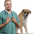 Vet standing next to a Crossbreed dog, dog in front of white background — Stock Photo #10906586