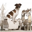 Jack Russell Terrier, 2 years old, in Christmas sleigh in front of white background — Stock Photo