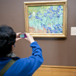 Person taking a picture of a painting, Getty Centre, Los Angeles, California, USA — Stock Photo