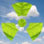 Постер, плакат: Environmental Sign