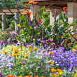 A colorful flowerbed in a park — Stock Photo #11831897