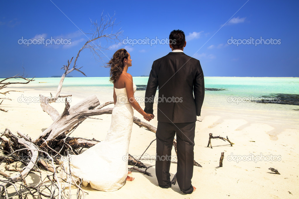 Rear view of a bride and groom standing holding hands posing on a beach with driftwood looking out over the ocean — Stock Photo #10965863